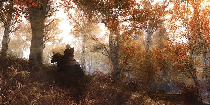 Разработка Fallout 4 началась с портирования TheElderScrolls: Skyrim на Xbox One